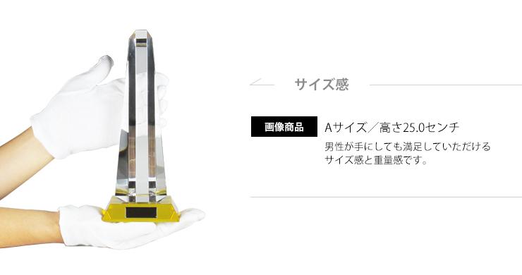 ゴージャスなデザインと満足いただけるサイズ感はもちろん格安価格も魅力的です。 JG-B-517