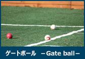 ゲートボール
